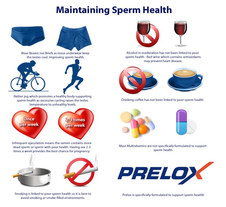 Sperm-Maintenance-02